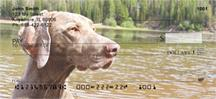 Weimaraner At The Lake