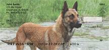 Belgian Malinois At The River