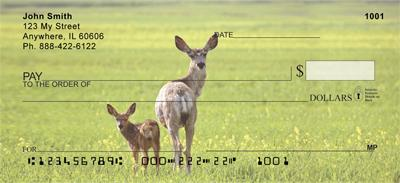 Does and Fawns