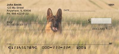 Alert German Shepherds