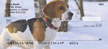 Beagles In The Snow