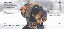 Trendy Doberman