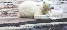 Polar Bears Chilling