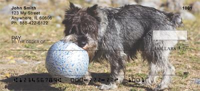 Schnauzers and Toys