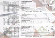 Architect Payroll Designer Business Checks