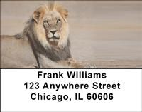 Safari Big Cats Address Labels