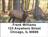 Elk In The Forest Address Labels