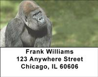 Majestic Gorillas Address Labels