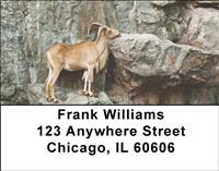 Mountain Goats Address Labels