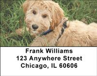 Labradoodles Address Labels