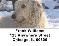 Irish Wolfhounds Address Labels