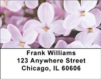 Lilacs Address Labels