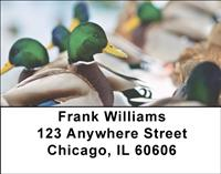 Ducks Address Labels