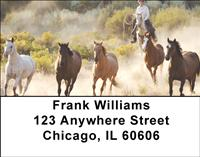 Horse Roundup Address Labels