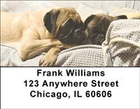 Pug Pals Address Labels