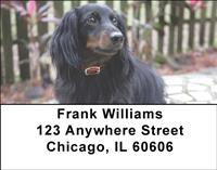 Dark Dachshunds Address Labels