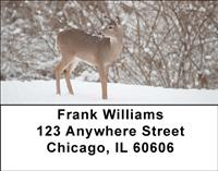 Whitetail Deer Address Labels