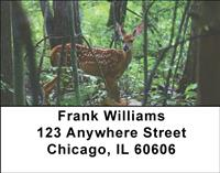 Whitetail Fawn Address Labels