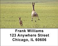 Does and Fawns Address Labels