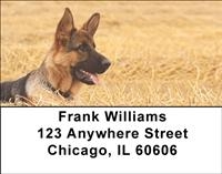Alert German Shepherds Address Labels