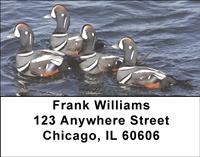 Harlequin Ducks Address Labels