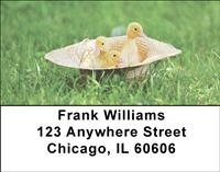 Cute Ducklings Address Labels