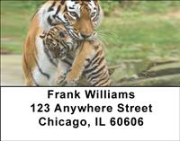 Tiger Family Address Labels