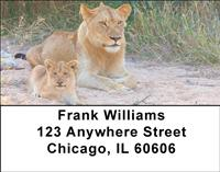 Mother Lion and Cubs Address Labels