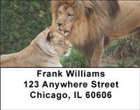 Lion Couples Address Labels